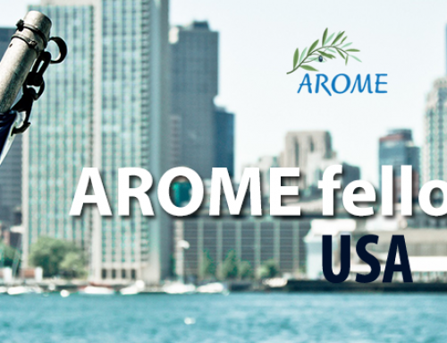 Arome fellowship in USA