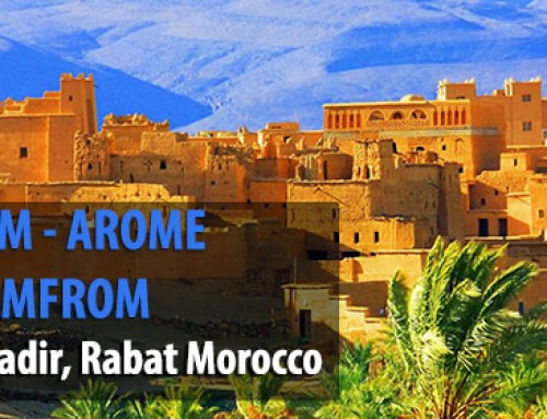 Session AMFROM – AROME CONGRES DE L'AMFROM – 25 Mars 2017 à Agadir, RABAT Morocco